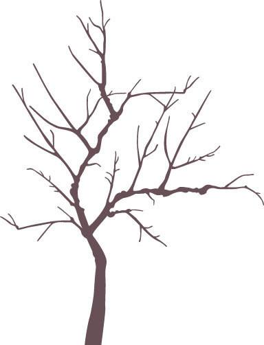 ●○● オレ流 イラレ道場 ●○●-梅の木のイラスト
